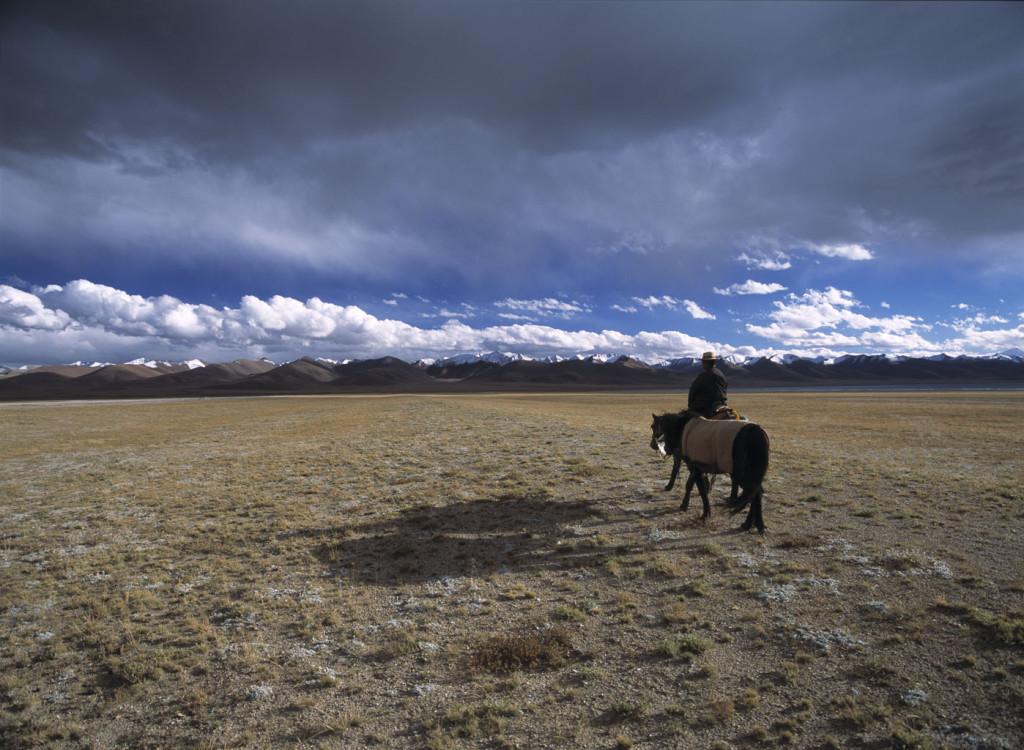 Tibetan grassland